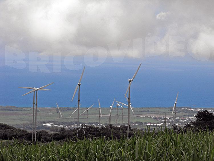 eoliennes ecologie production