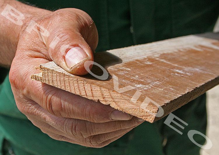 couper bois scie japonaise